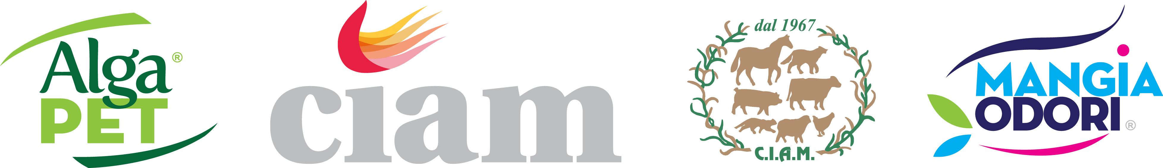 Banner Ciam 1