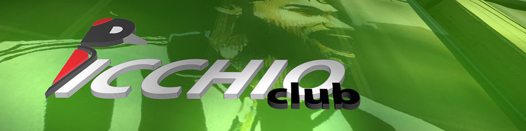 Logo per sito PICCHIO CLUB